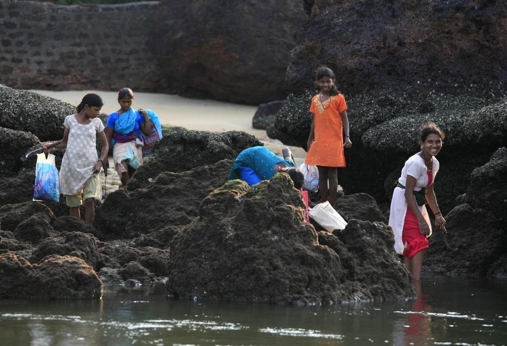 Pêcheuses de moule sur la côte de la Mer Arabe, Kovalam, Kerala