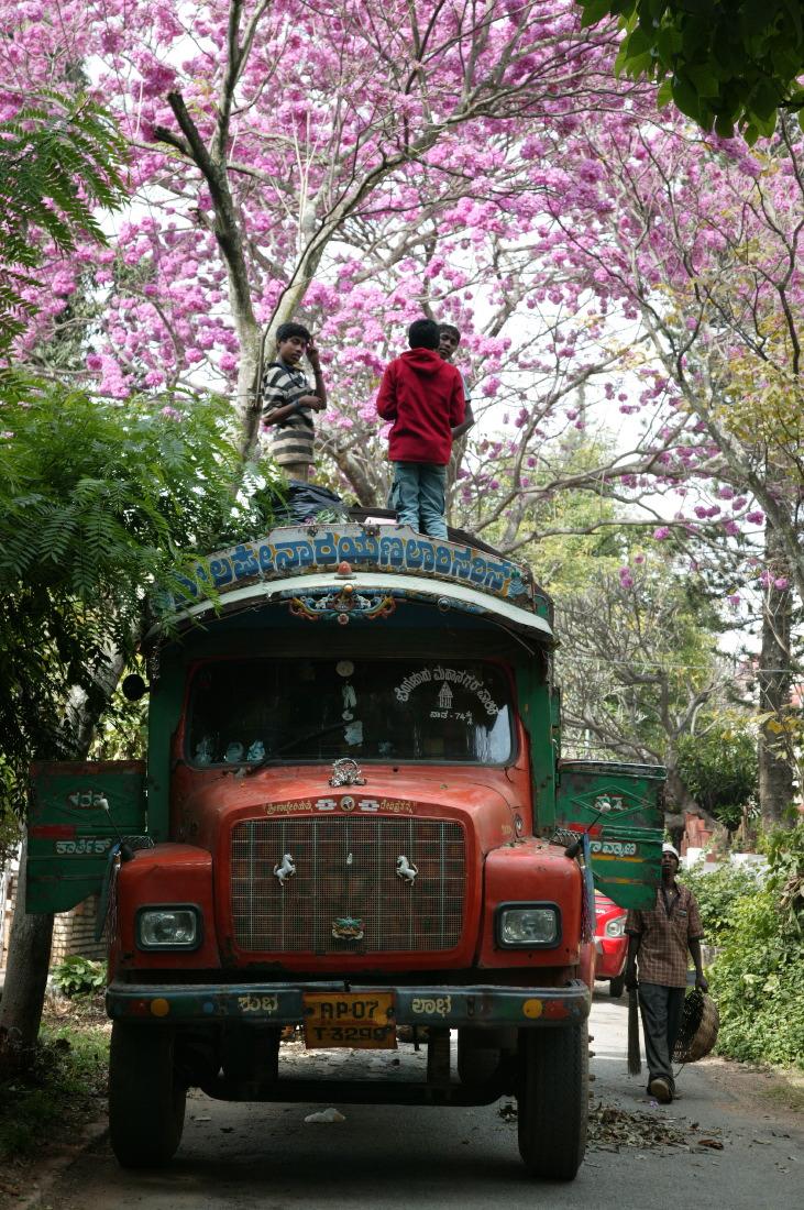 Dans le quartiers des Colonels, Bengaluru