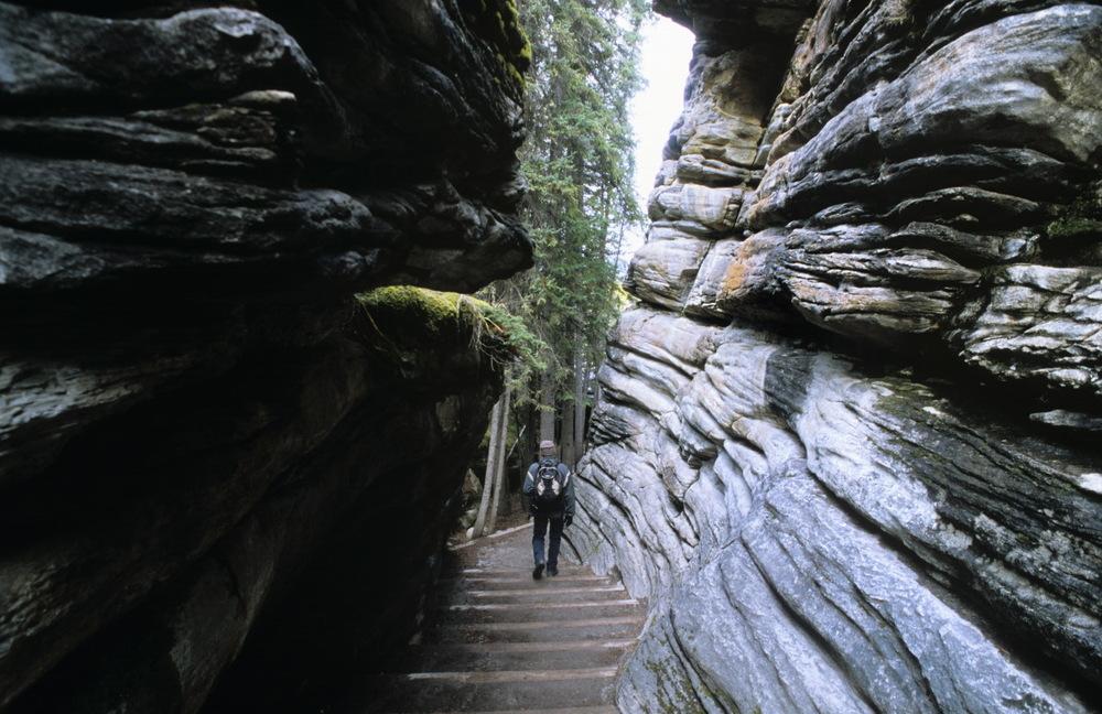 Descendre aux chutes d'Athabasca