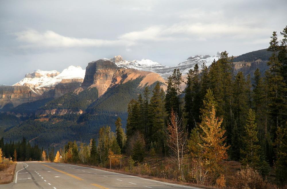 Route des chutes d'Athabasca