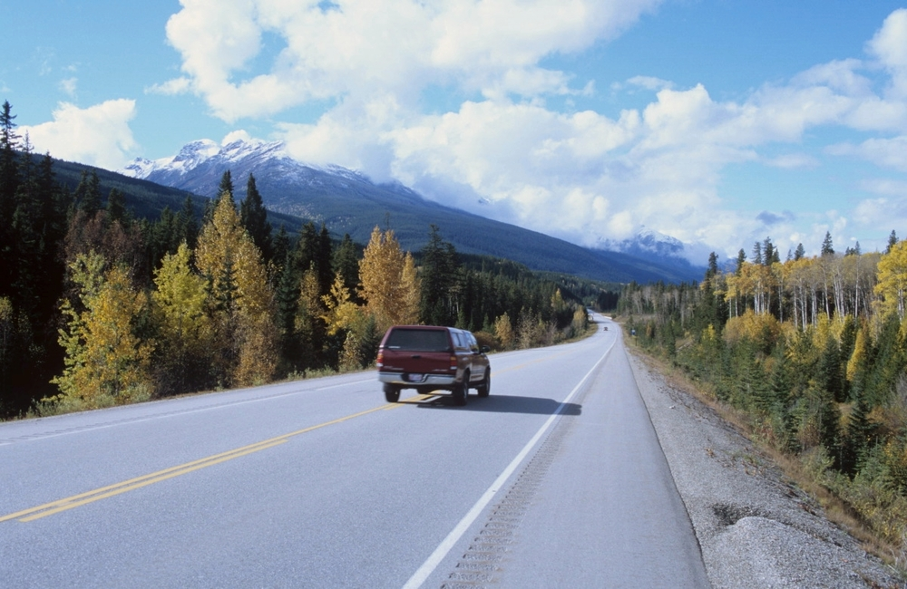 Le long d'Icefields Parkway