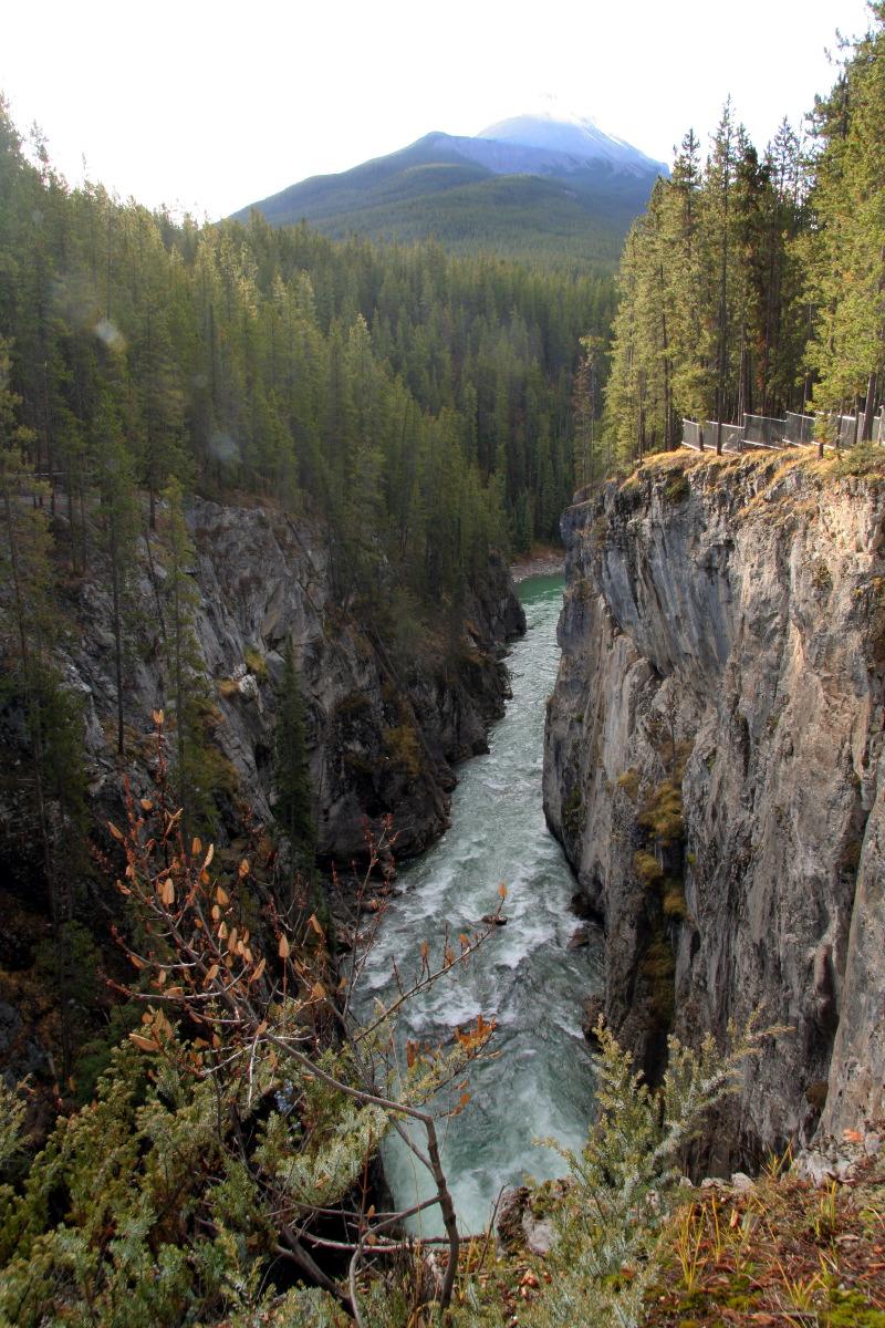 Athabasca Falls © JJ Serol