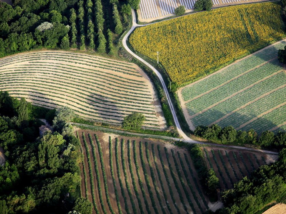 Survol de la région de Forcalquier avec France Montgolfières