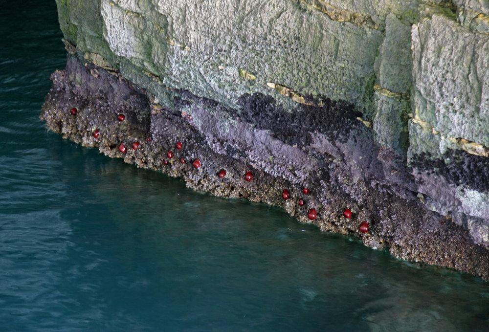 La magie des caves marines du Gargano