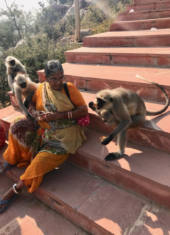 Pushkar (19 au 21 novembre)_12.JPG