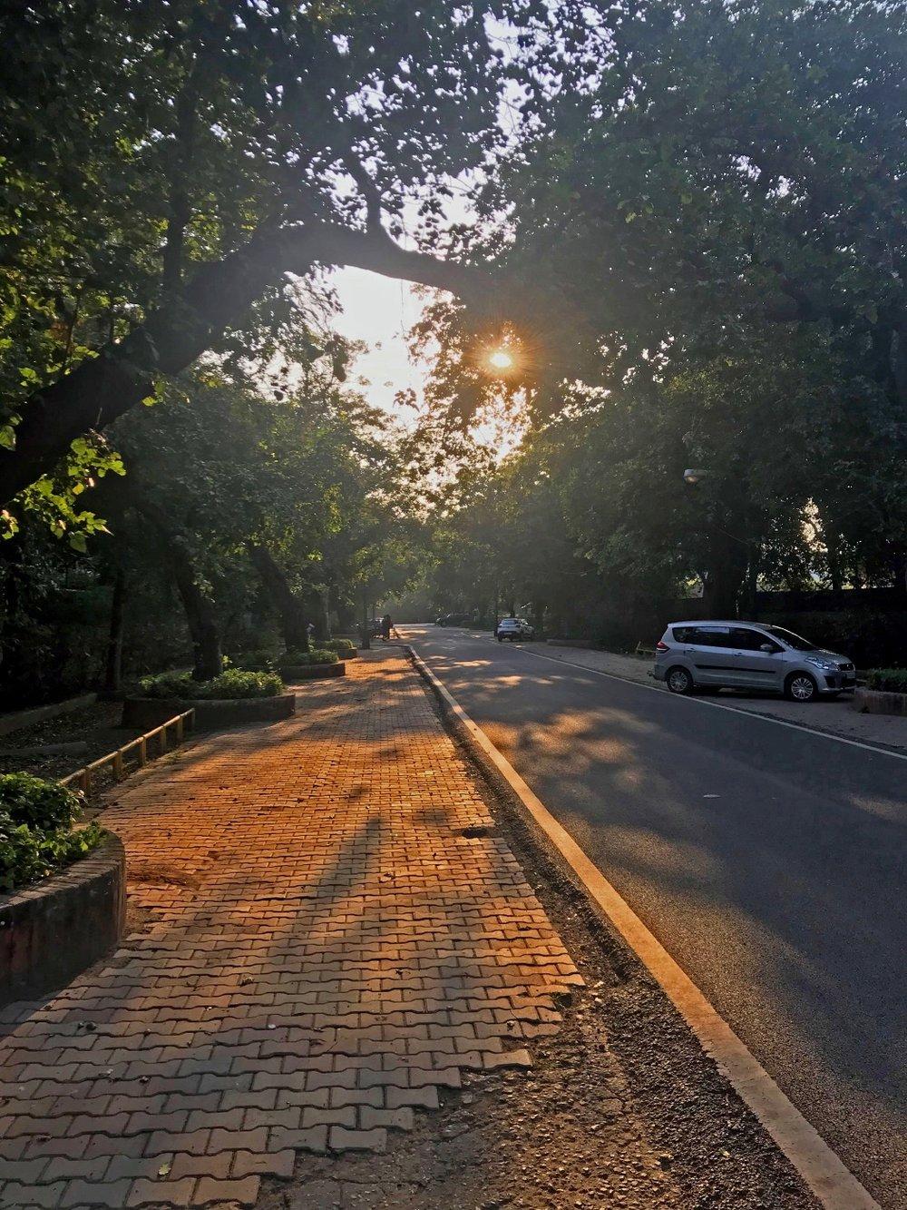 New Delhi (14 au 17 novembre).JPG