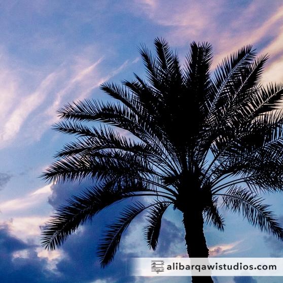 ABS-Travel-Series-Photography-Bahrain