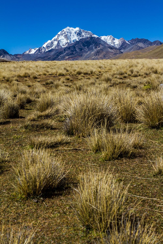 Ali-Barqawi-Studios-Explore-Series-Travel-Adventure-Documentary-C4CGAZA-Bolivia-Mount-Tarija-2015-097.jpg