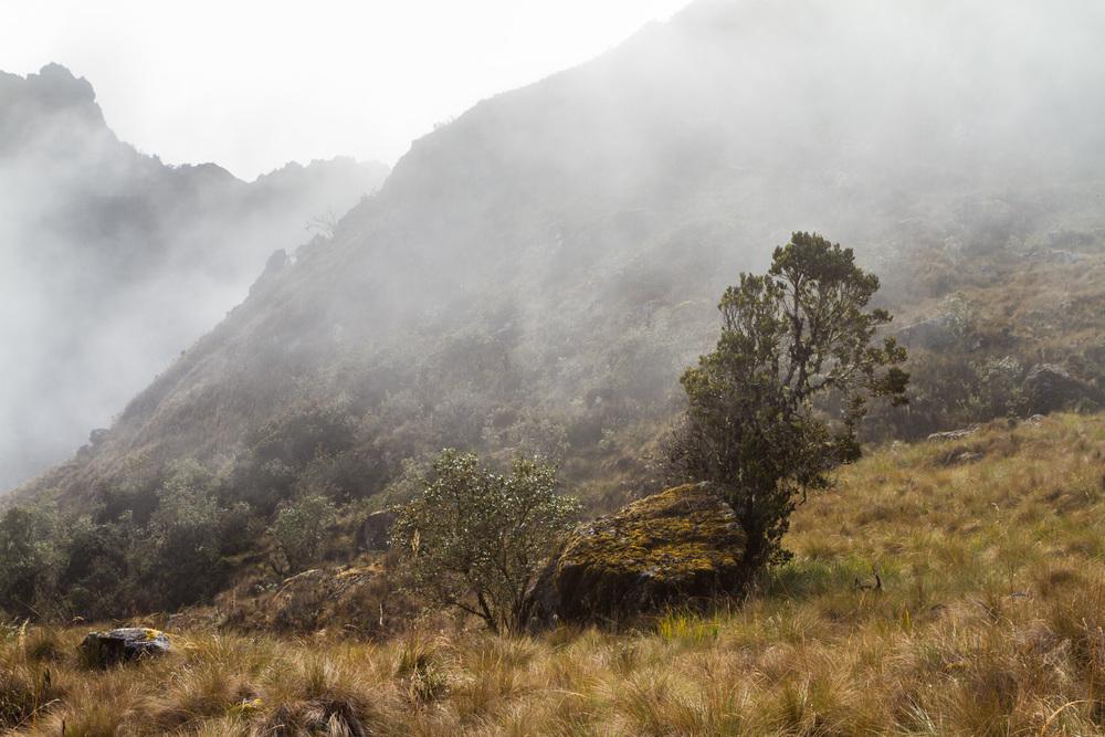 Ali-Barqawi-Studios-Explore-Series-Travel-Adventure-Documentary-C4CGAZA-Peru-MachuPicchu-2015-210.jpg