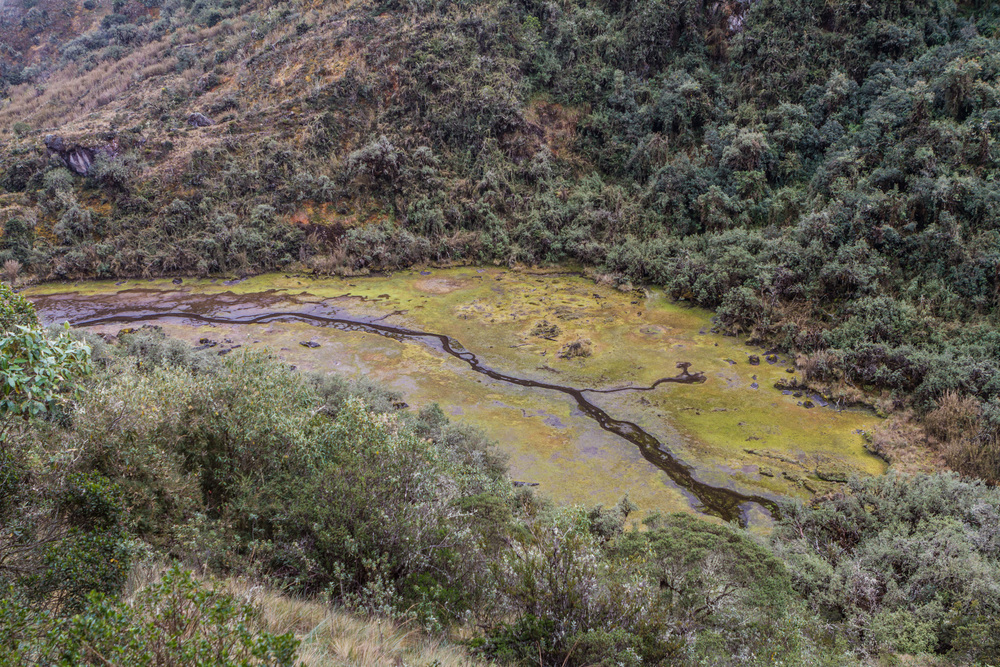 Ali-Barqawi-Studios-Explore-Series-Travel-Adventure-Documentary-C4CGAZA-Peru-MachuPicchu-2015-211.jpg