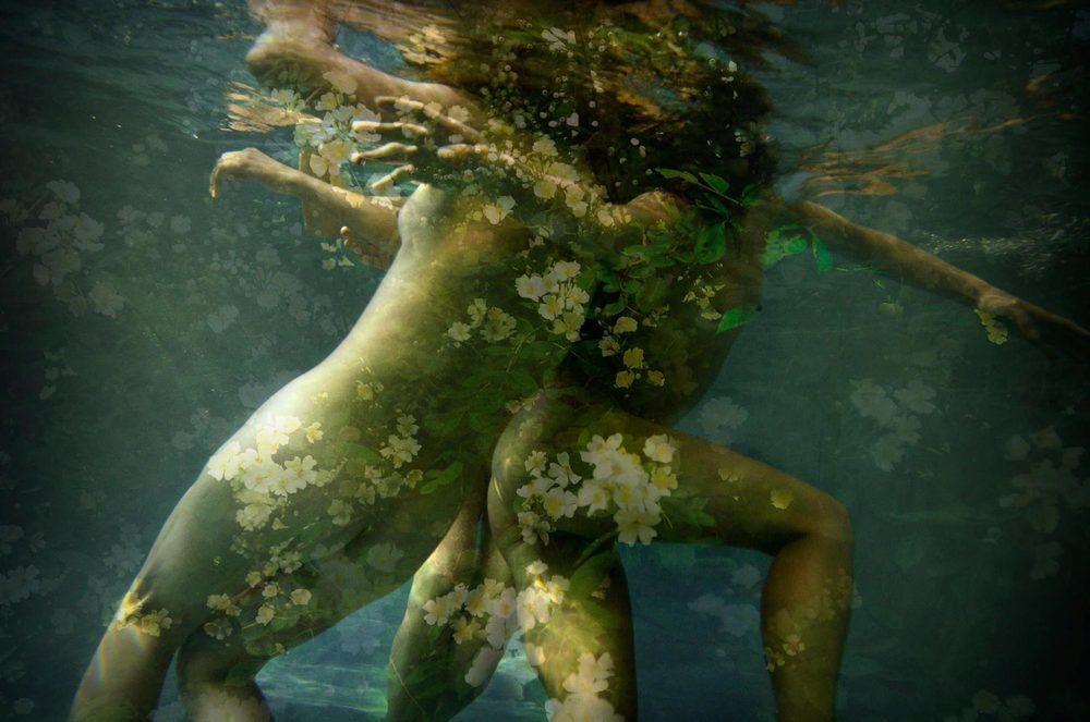ingrid-silva-universe-roses-within.jpg