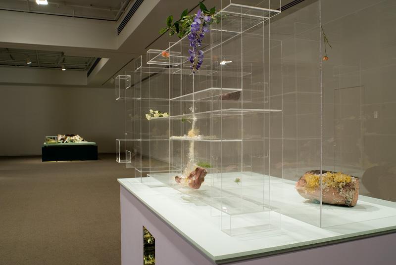 Altmejd (Galerie de l'UQUAM)view 2.jpg