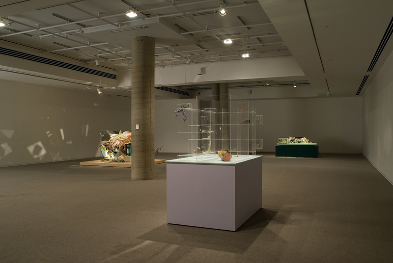 Altmejd (Galerie de l'UQUAM)view 4.jpg