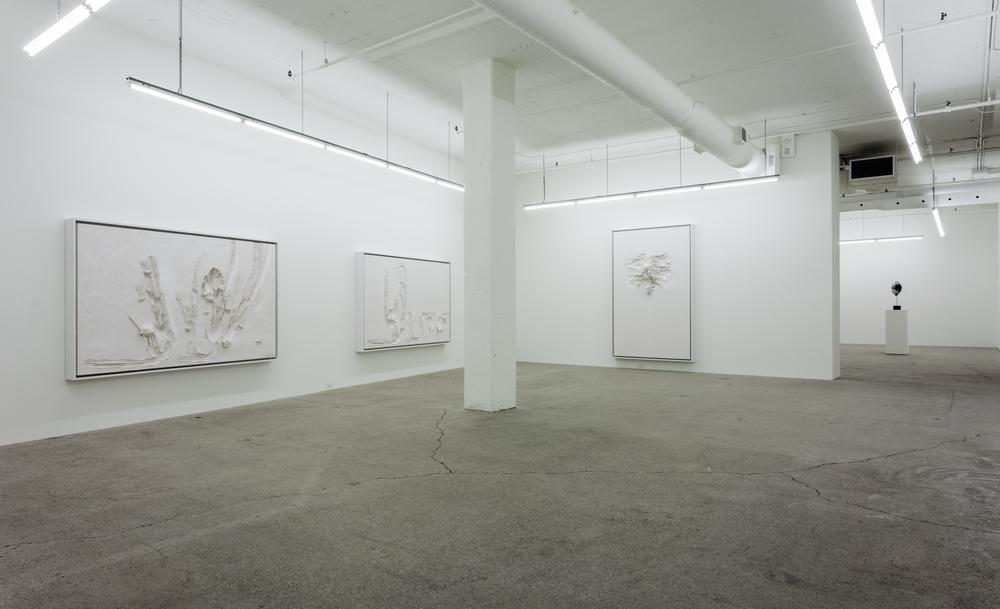 2015 - Galerie Rene Blouin - David_Altmejd_01.jpg