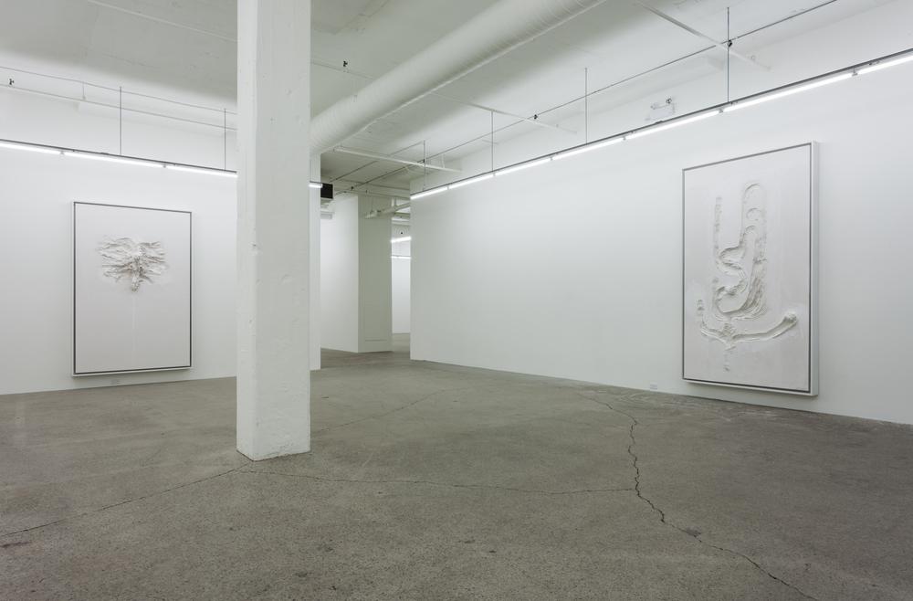 2015 - Galerie Rene Blouin - David_Altmejd_03.jpg