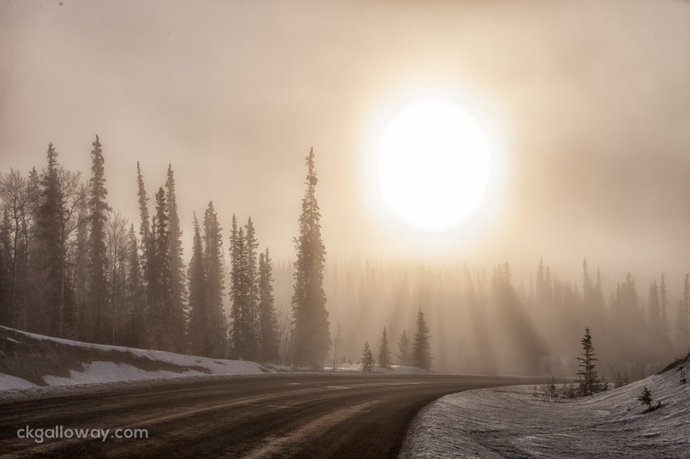 The sun shining through trees on the Klondike Highway. Photo by Christa Galloway.