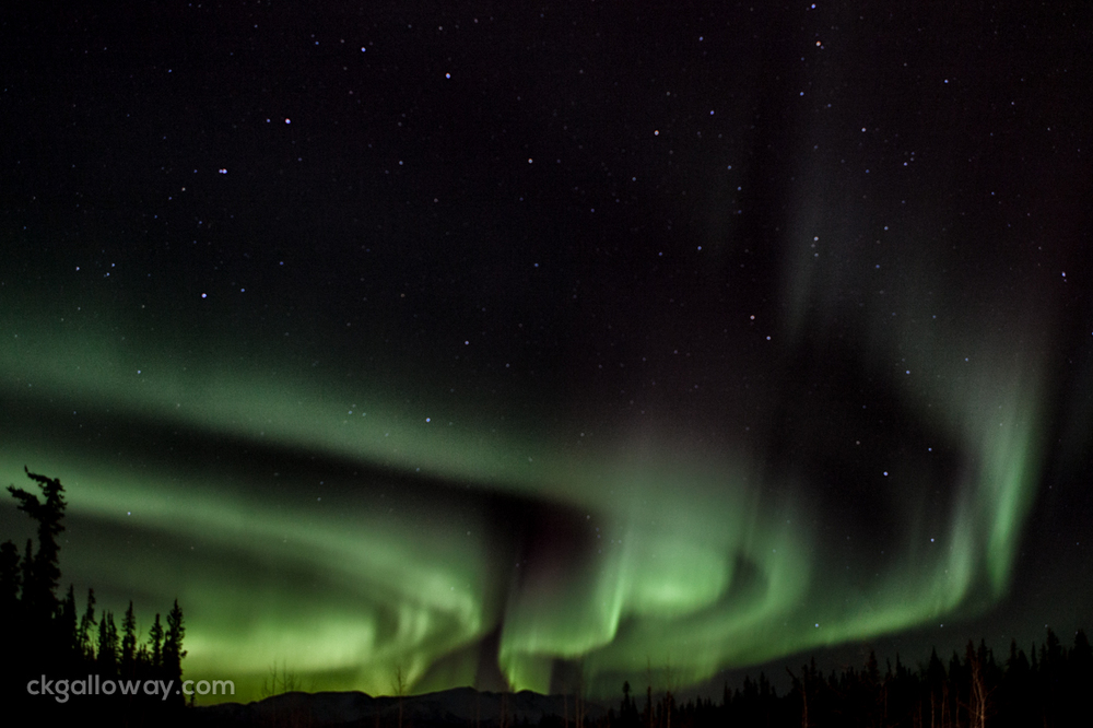 Northern lights near Whitehorse, Yukon. Photo by Christa Galloway.