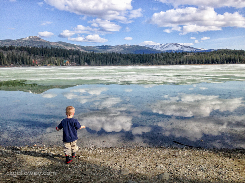 Oscar throwing rocks in Kookatsoon Lake, just south of Whitehorse. Photo by Christa Galloway.