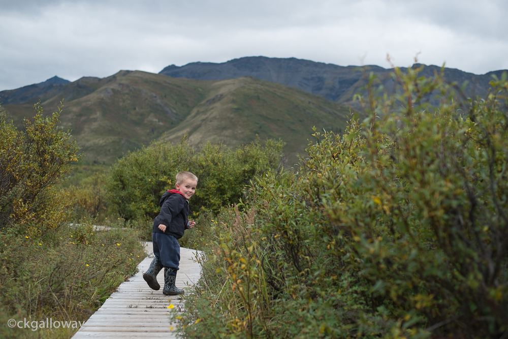 Oscar on the Grizzly Trail at Tombstone National Park.