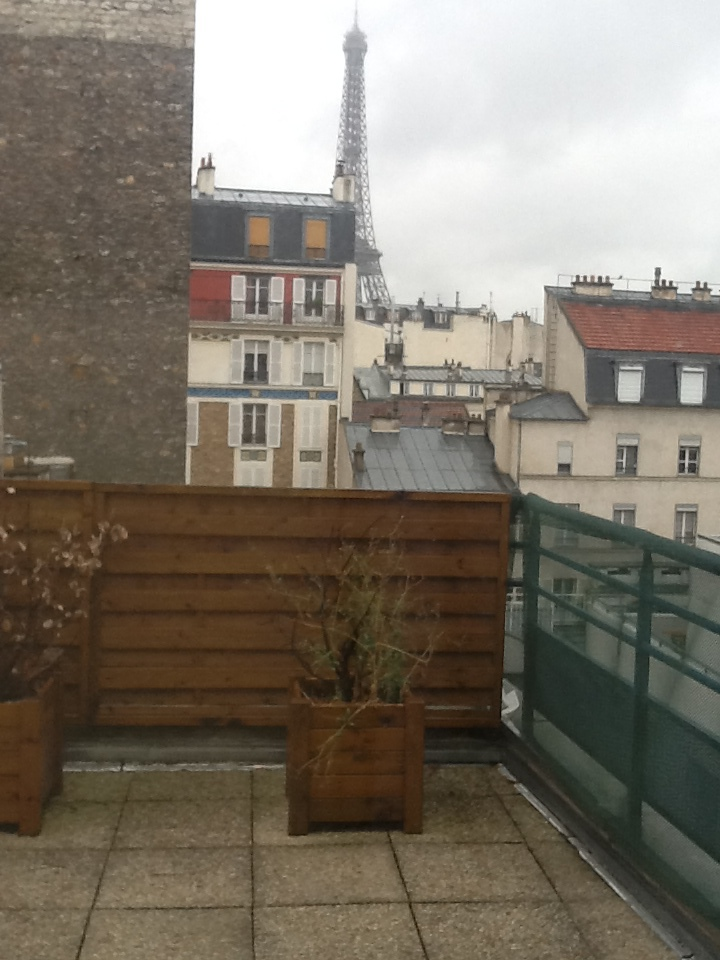 View from our hotel room in Paris.
