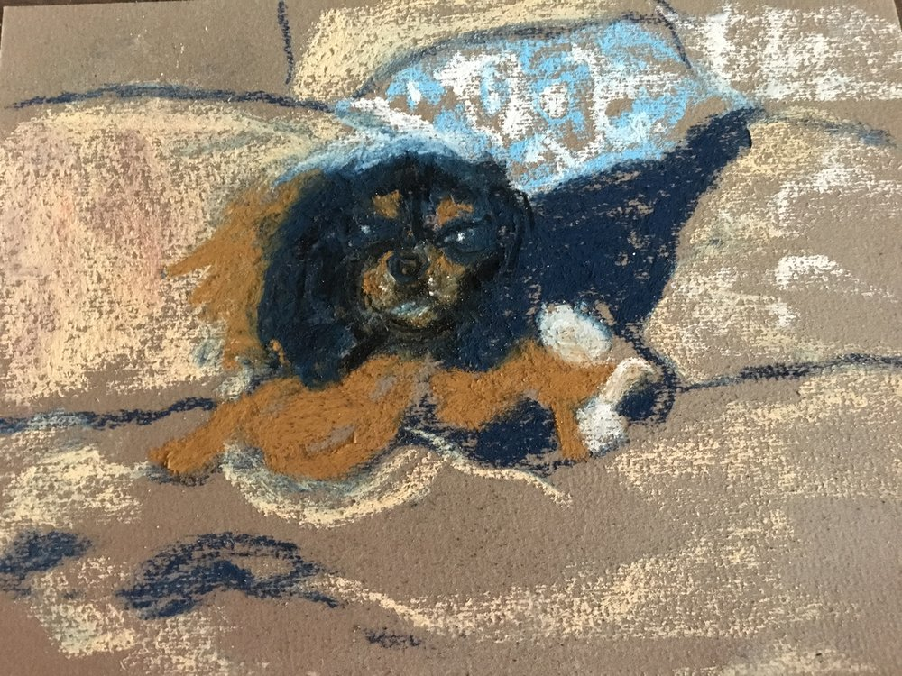 """Larry with Toy"" 8x6 pastel"