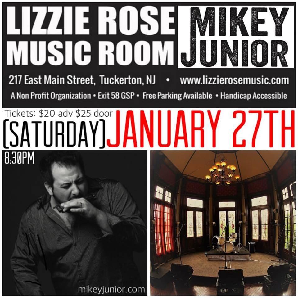 Lizzie Rose Music Room PROMO 2018.jpg