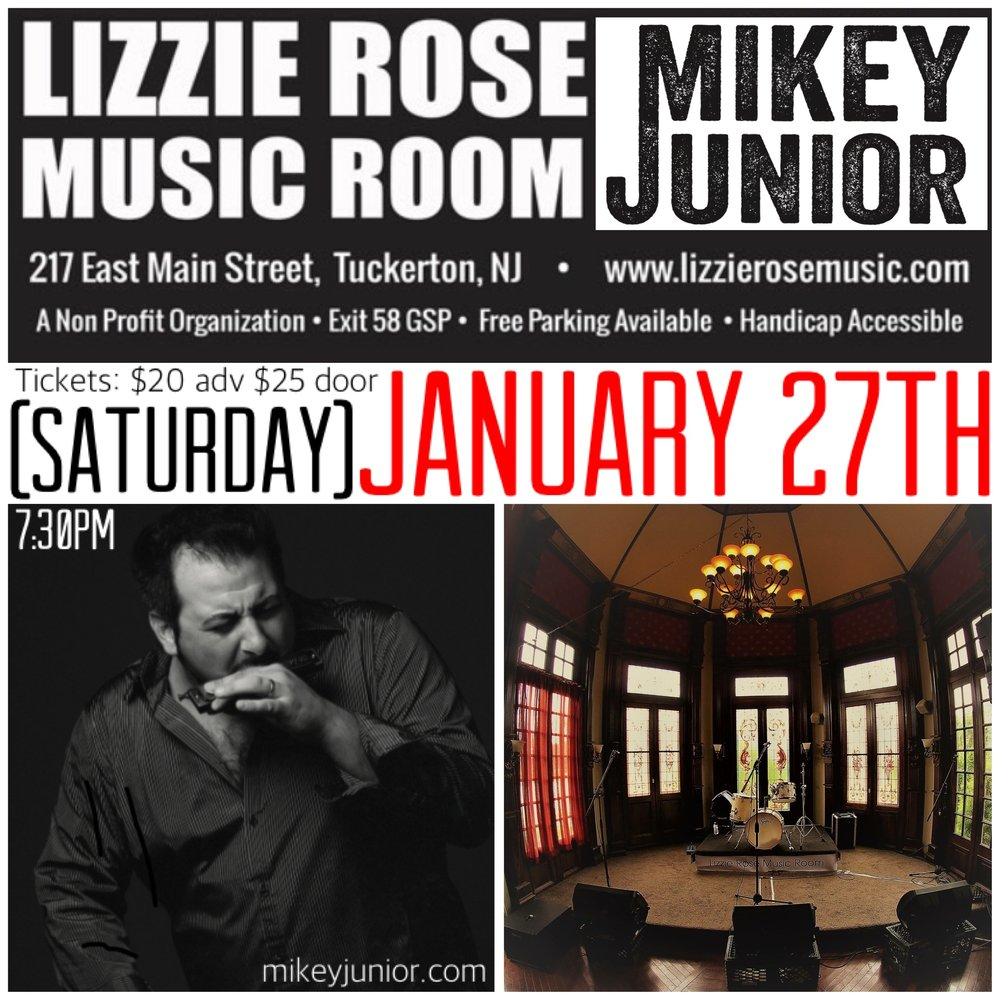 Lizzie Rose Music Room PROMO 2018.JPG