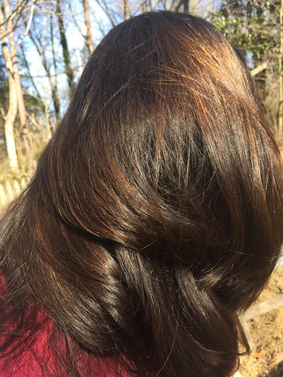 shiny hair 3.jpg
