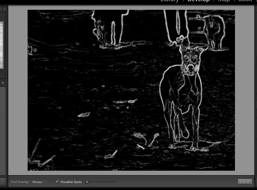 Lightroom's Visualize Spots mode.