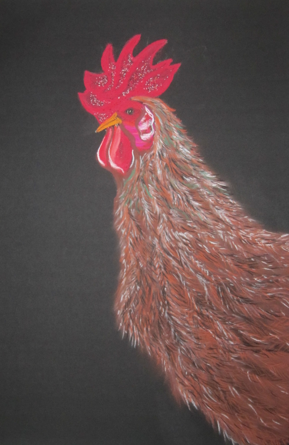 Brown Rooster.jpg