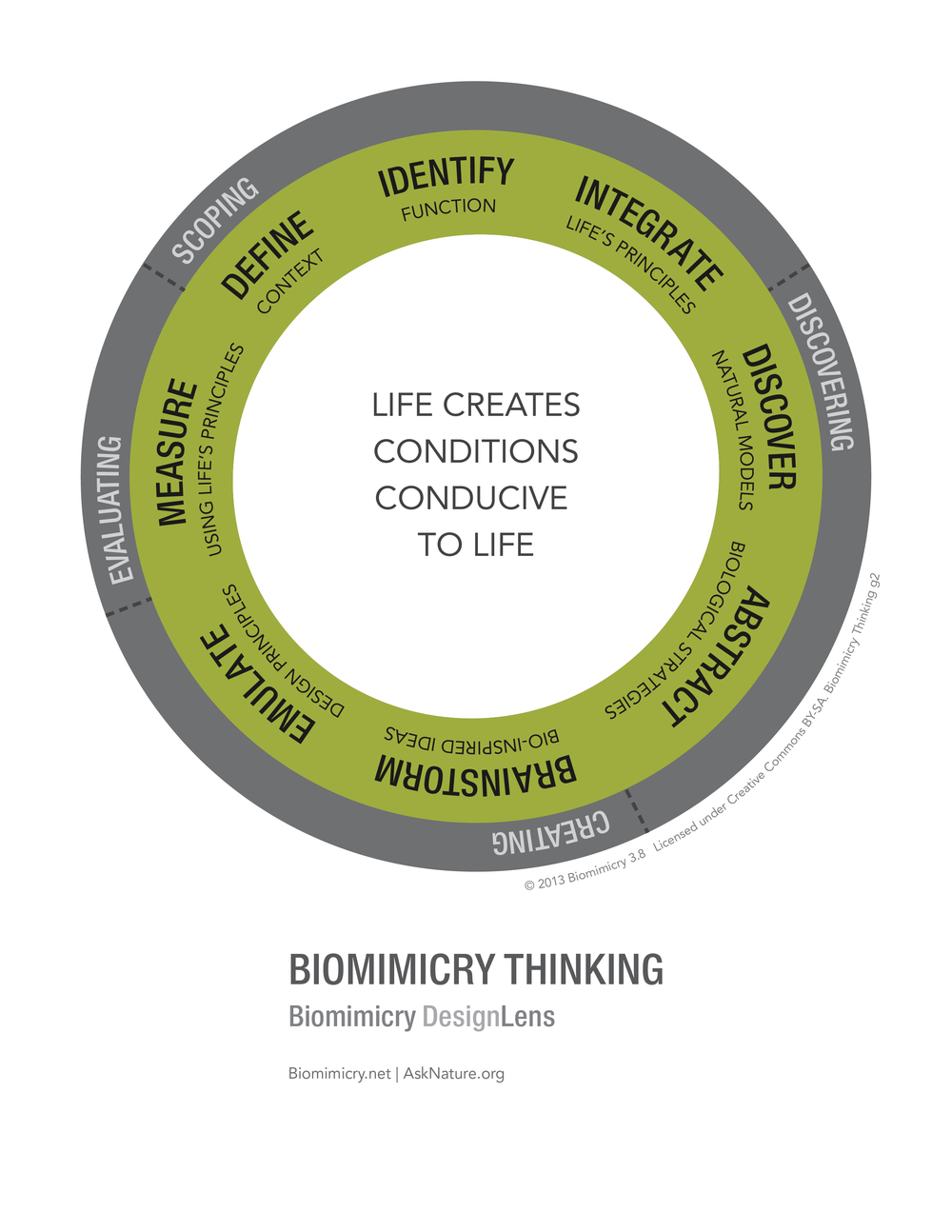 Biomimicry38_DesignLens_Biomimicry_Thinking_WEB.jpg