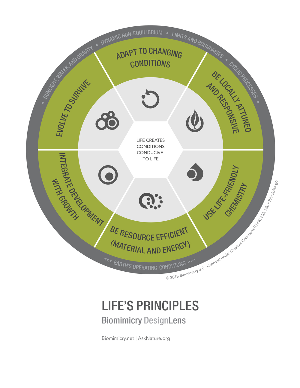 Biomimicry38_DesignLens_Lifes_Principles_Top6_WEB.jpg