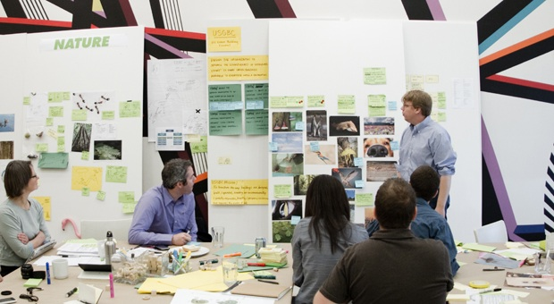 Biomimicry Challenge: IDEO Taps Octopi and Flamingos to Reorganize The USGBC