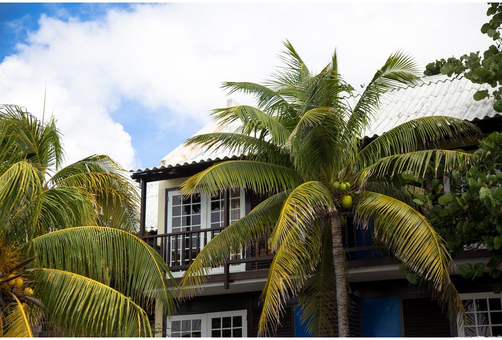 Curacao-KSP-1036.jpg