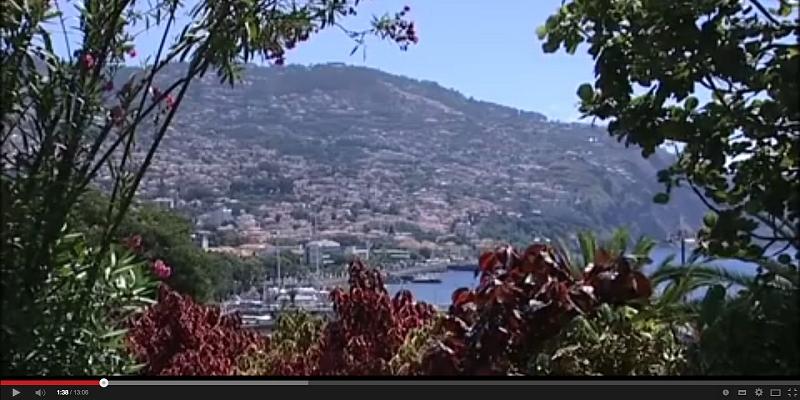 """Documentário: 10º episódio da série  """"Jardins do Funchal"""""""