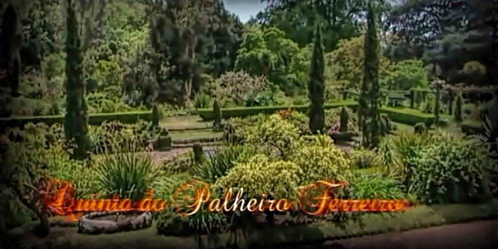 """Documentário: 6º episódio da série  """"Jardins do Funchal"""""""