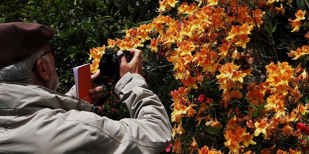 Galeria fotográfica de Evangelina Sirgado Sousa