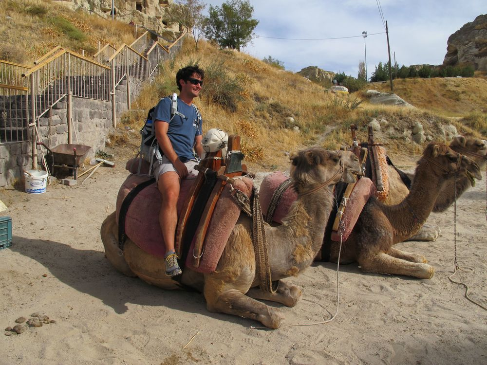 Don't site on the camel.  It's not free and you're liable to be soon sitting on a standing camel with no control.