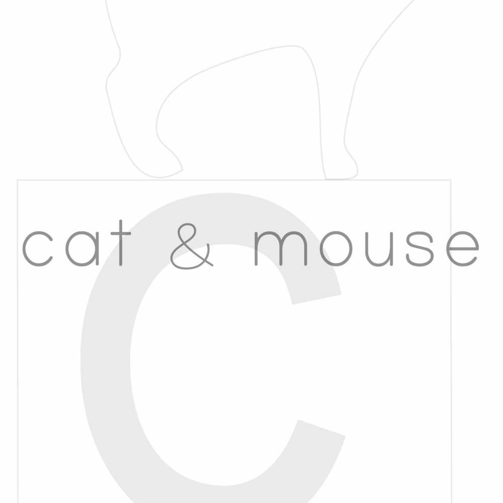 Squarespace-cat & mouse1 copy.jpg