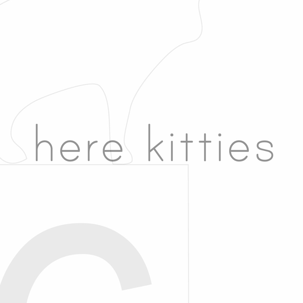 Squarespace-here kitties1 copy.jpg