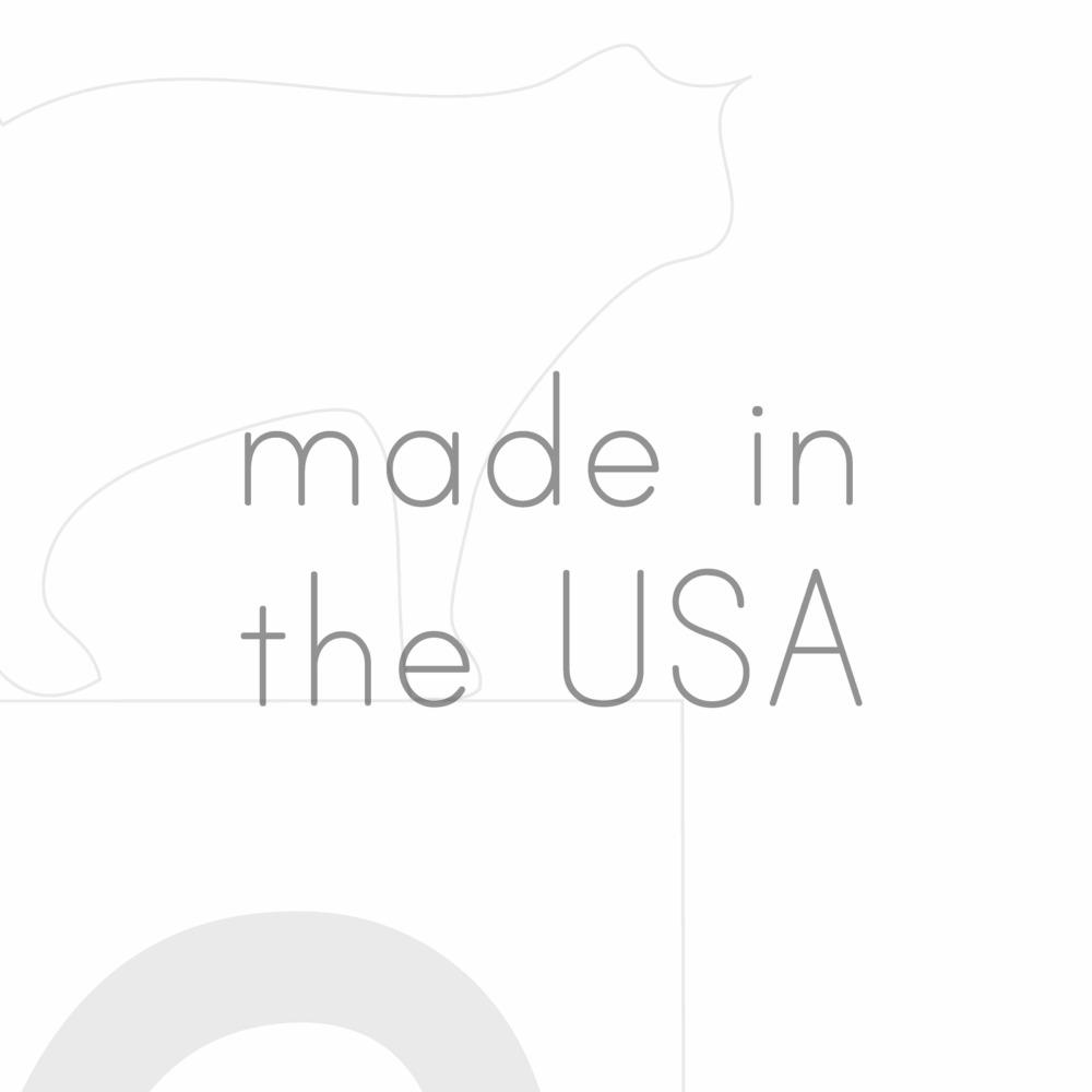 Squarespace-USA1 copy.jpg