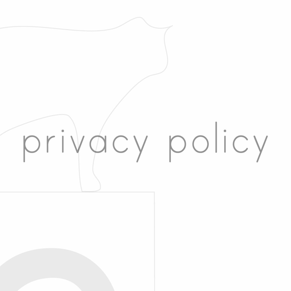 Squarespace privacy.jpg