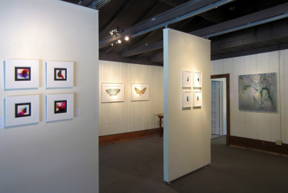 Frameworks Gallery   with  Erin Riche,  Baton Rouge, LA, 7/  24/15 - 9/5/15