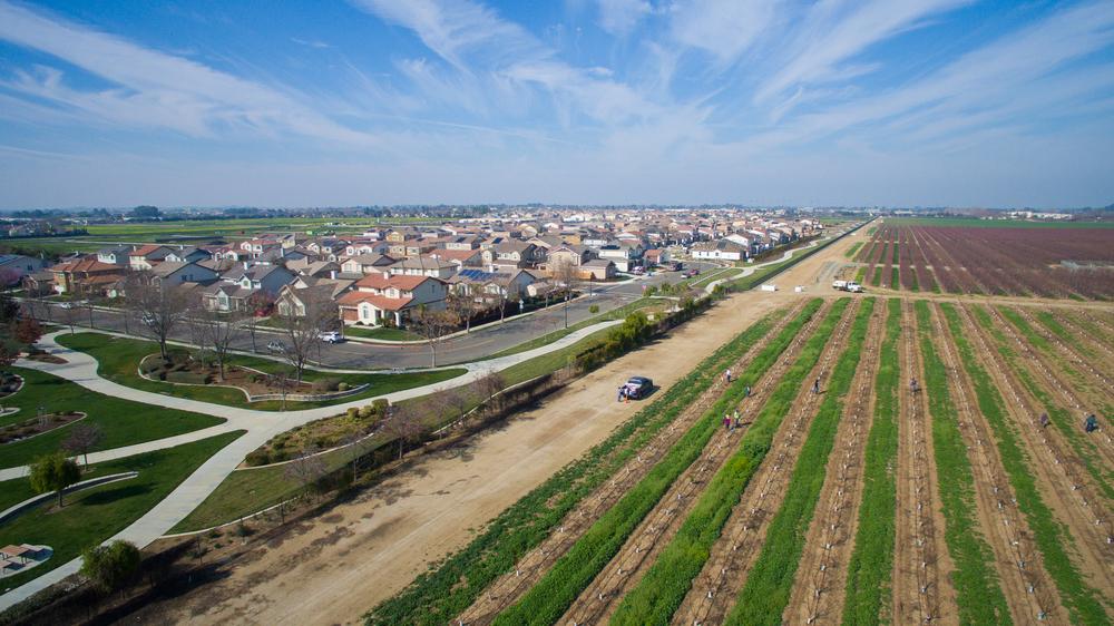 Aerial - Brentwood_0.jpg