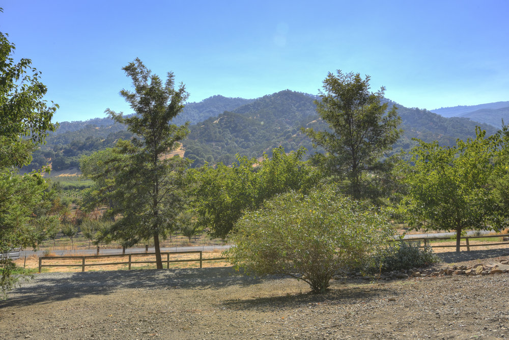 3579 Gates Canyon Rd_9.jpg