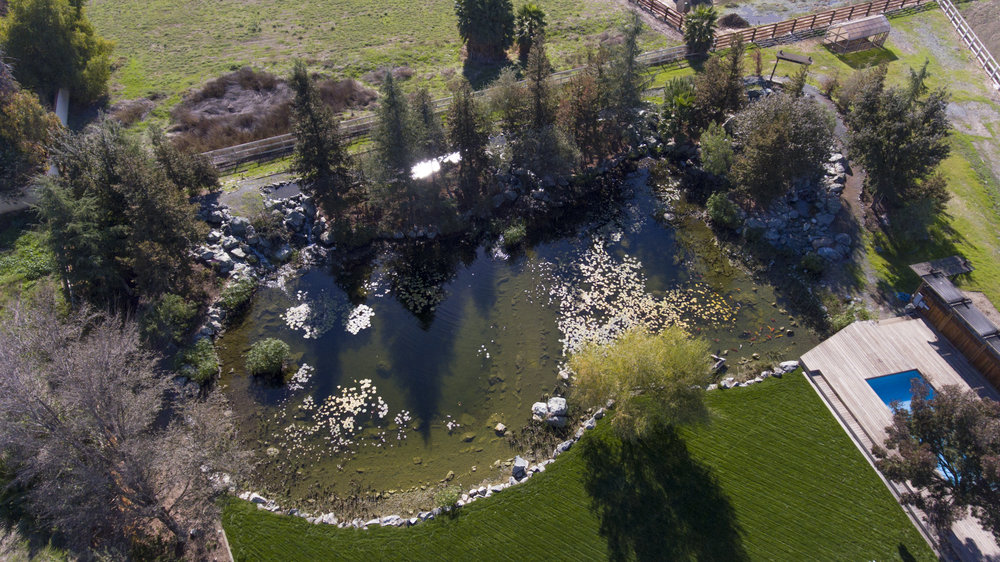 1750 Edna Ct - Aerial _8.jpg