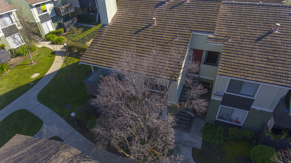 2517 Easton Pl #35 aerial 3.jpg