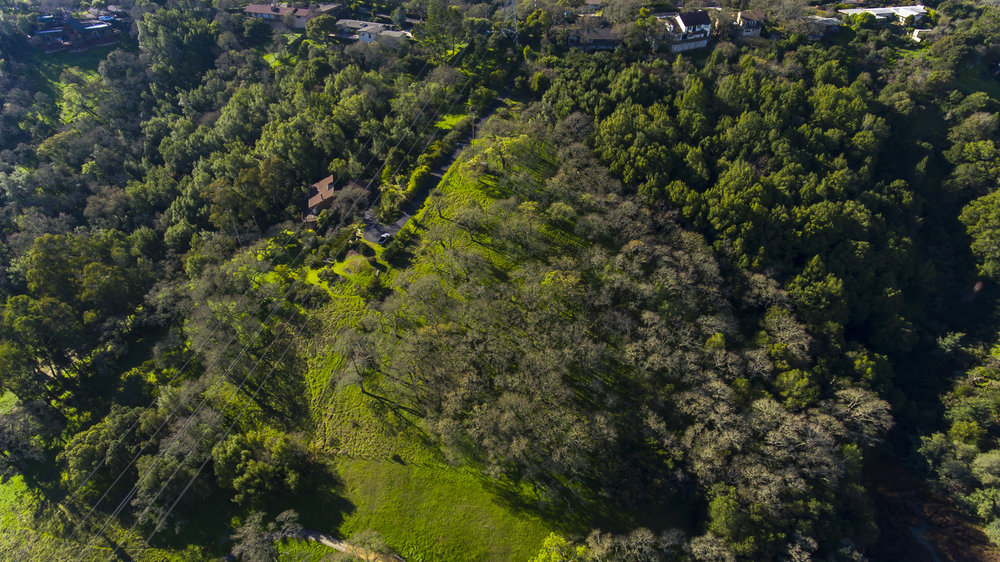 Crest Road - 4 Acre - 5.jpg