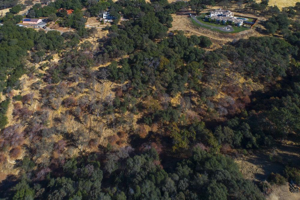 2070 W Green Springs Rd 17.jpg