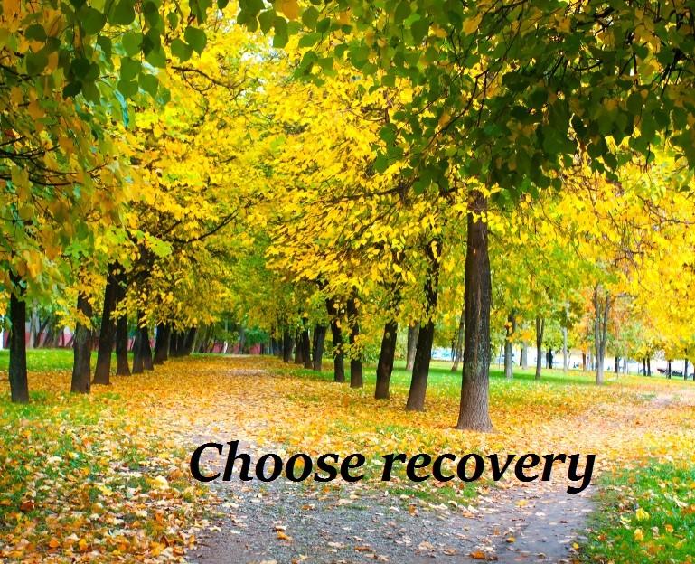 Choose recovery.jpg